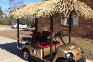 Customized golf cart with tiki covering