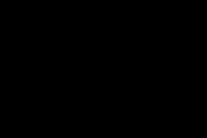 Tiki hut on grass by lake